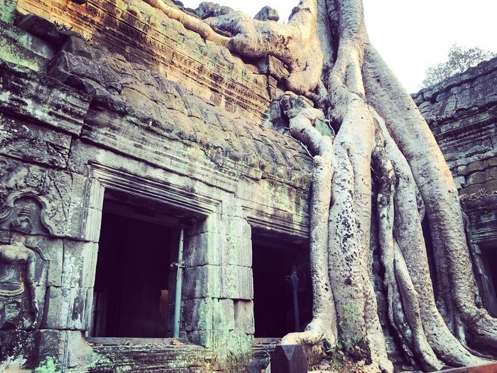 Siem Reap Series - Where is my Lara Croft? Angkorvillage TripAdvisor Taphrom Siemreap Cambodia Travelgram Laracrofttombraider