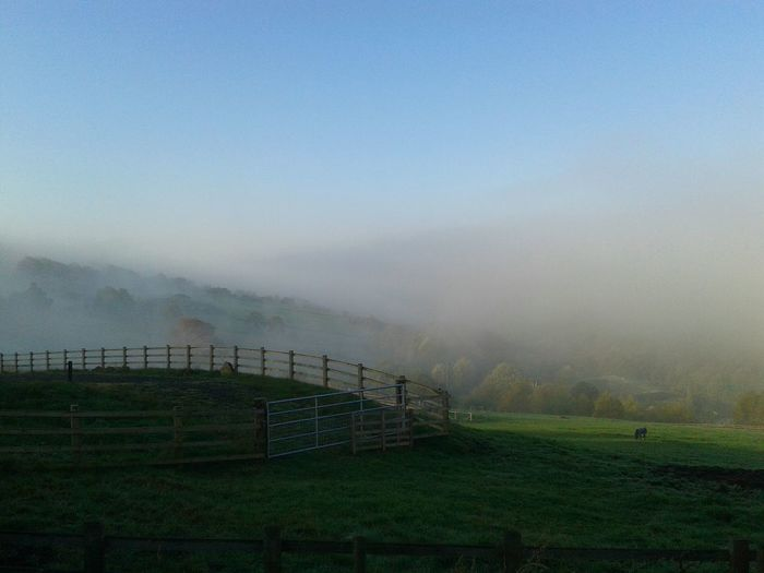 Animal pen on grassy field during foggy weather