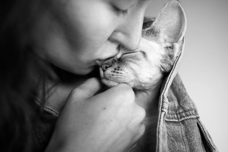 Close-up of woman kissing kitten