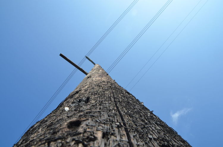 Blue Sky Cable Connection Day Low Angle View Power Line  Power Supply Sky Staples Sunny Tall - High Telegraph Telegraph Pole