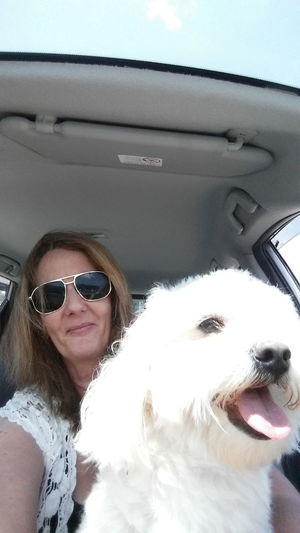 Cruising With My Best Buddy Sunglasses Dog Smiling Happiness Looking At Camera Pets Vacations Domestic Animals Summer One Animal Portrait Adults Only Mammal Water Day Headshot Adult Outdoors Lifestyles One Person