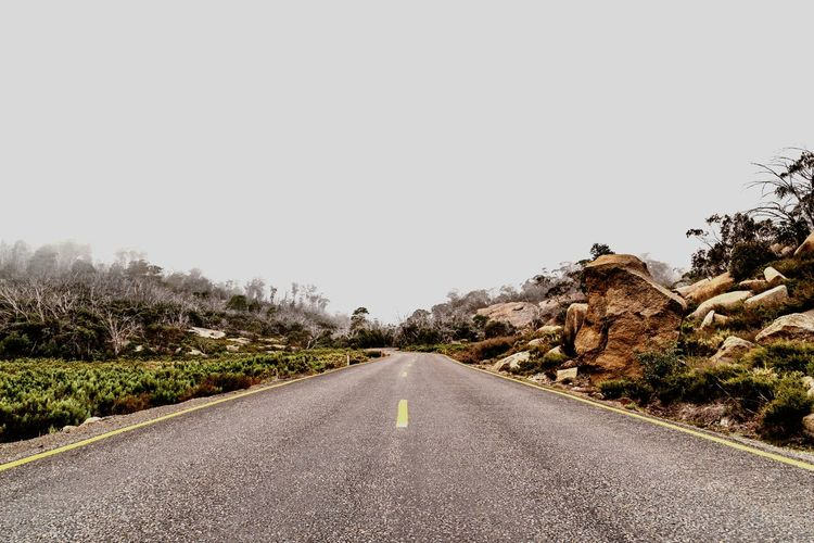 Mount Buffalo Foggy Fog Road The Way Forward Sky Direction Tree Transportation Nature Diminishing Perspective vanishing point Empty Road Copy Space Road Marking Scenics - Nature Beauty In Nature Clear Sky Outdoors Day No People Tranquility