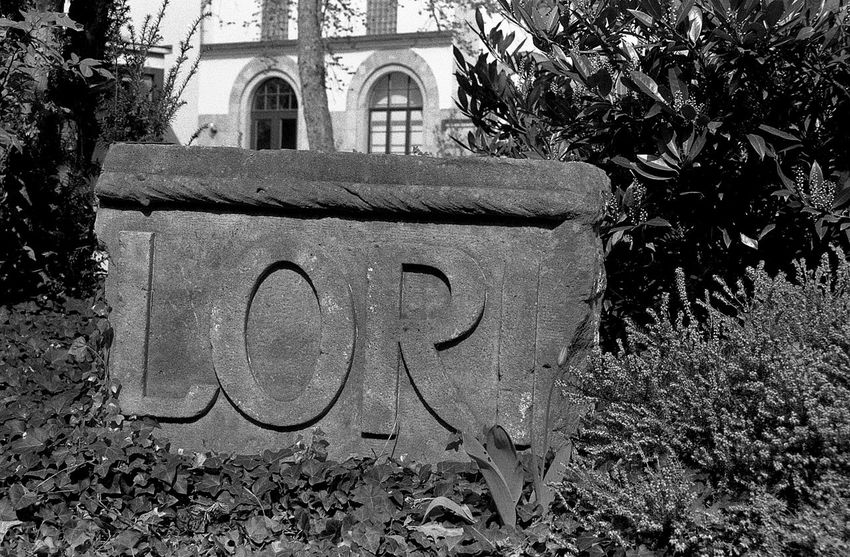 LORI. 35mm Film AgfaPhoto APX 400 (new) Art Is Everywhere Beauty In Nature Black And White Exakta 3.5-4.5/35-70mm Film Photography Fragment Garden Ruin Text