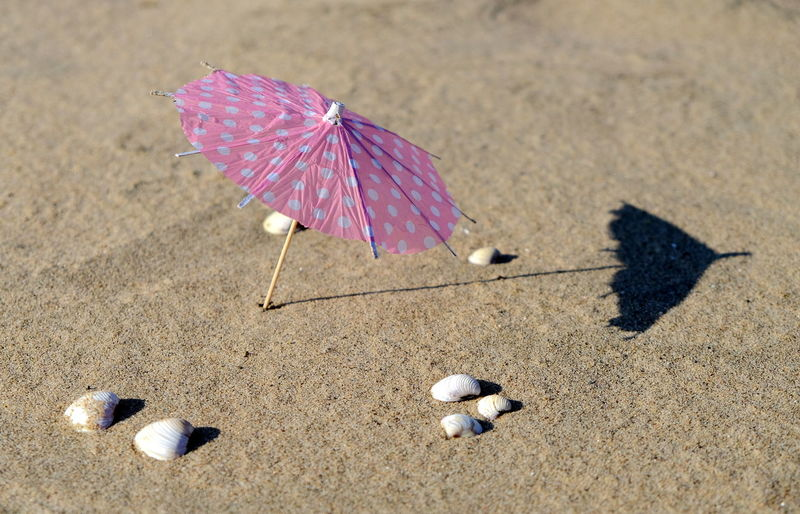 Summer EyeEm Best Shots EyeEm Nature Lover Beach Beauty In Nature Close-up Cocktail Parasols Day High Angle View Nature No People Outdoors Paper Parasol Sand Shadow Sunlight The Still Life Photographer - 2018 EyeEm Awards