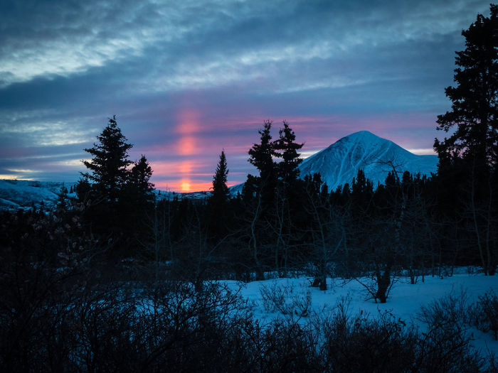 echo of a sunset - Ibex MountainBeauty In Nature Blue Hour Canada Clouds Cold Temperature Day Dusk Forest Landscape Nature No People Outdoors Red Sunset Scenics Silhouette Sky Snow Solitude Sunset Tranquil Scene Tree Wilderness Winter Yukon