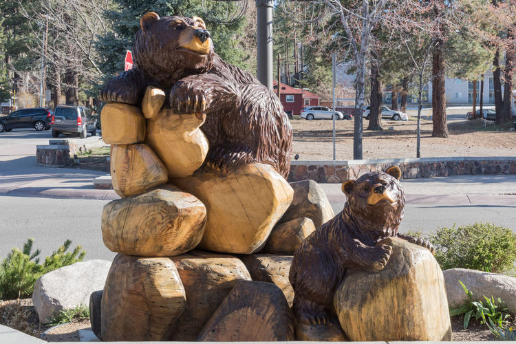Bear sculptures Big Bear City, CA Animal Themes Bear Beard Beauty In Nature Big Ben Brown Background Brown Bread No People Outdoors Sculpture Statue Wood Carving Wood Sculpture