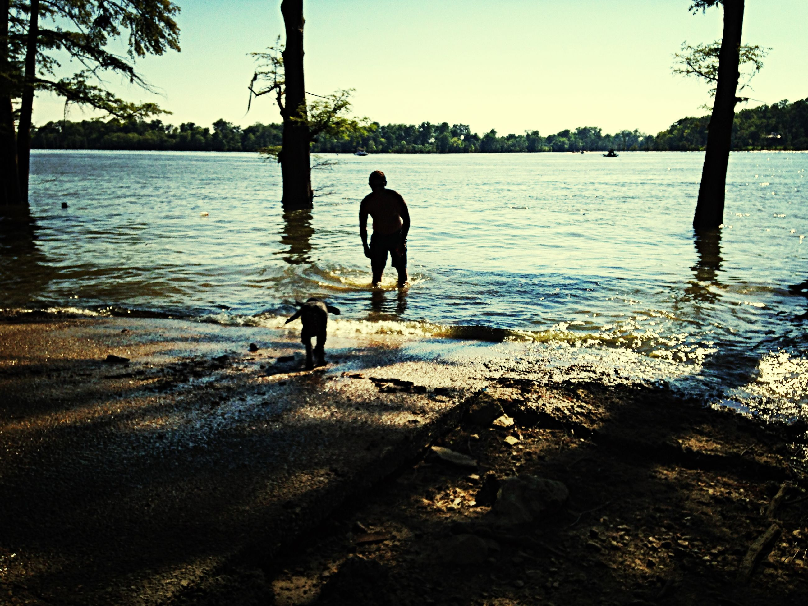 water, silhouette, full length, standing, rear view, men, tranquility, lifestyles, lake, leisure activity, reflection, tree, tranquil scene, clear sky, nature, walking, sky, rippled