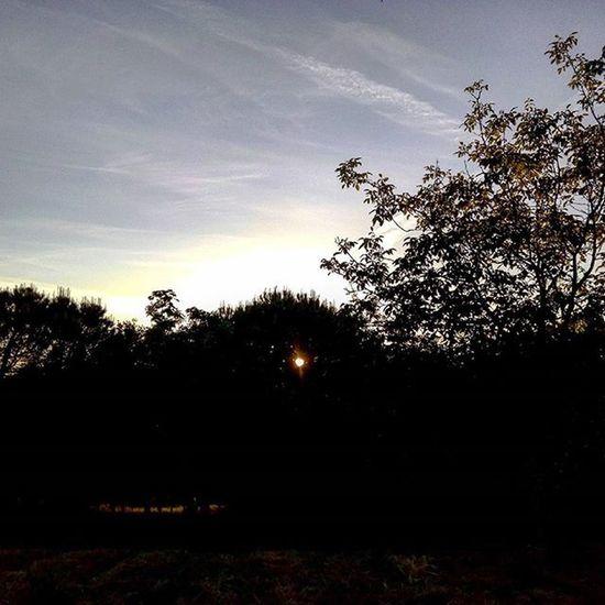 lo spioncino Sole Sun Sunset Sunlight Lategram Cielo Sky Skylovers Clouds Nature Naturelovers Marche Italy Italia Liveloveitalia Landscape Tramonto Komorebi