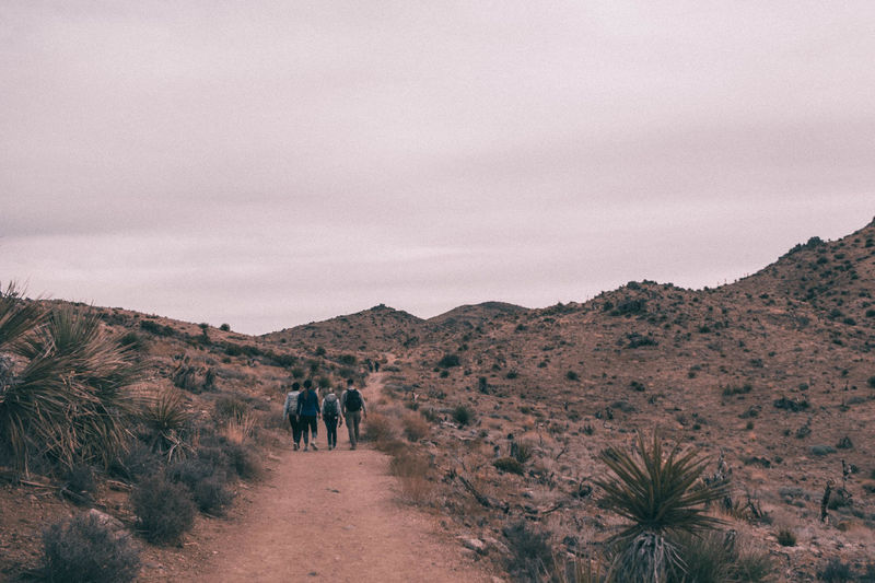 Hikers walking in desert