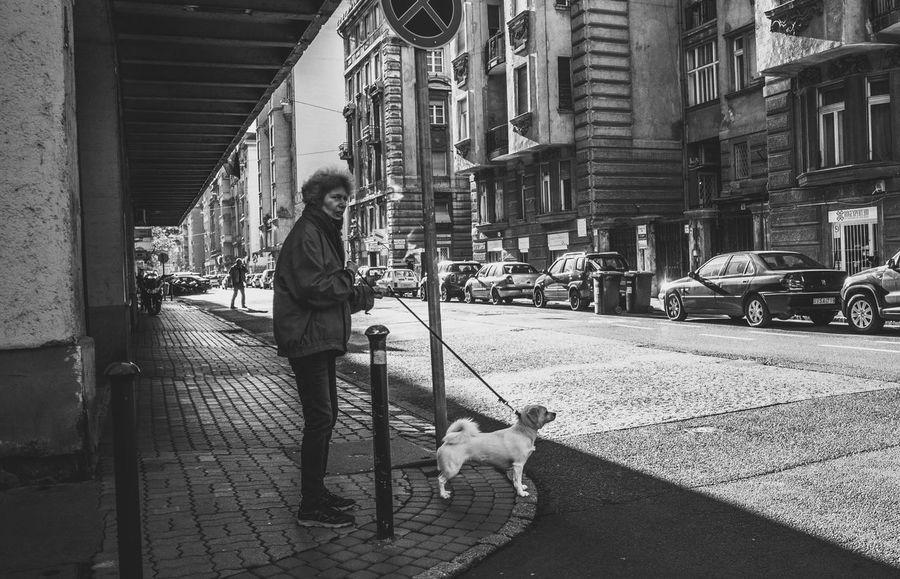 Streetphoto_bw Streetphotography Street People Dog Blackandwhite Black And White Blackandwhite Photography Budapest Showcase: January