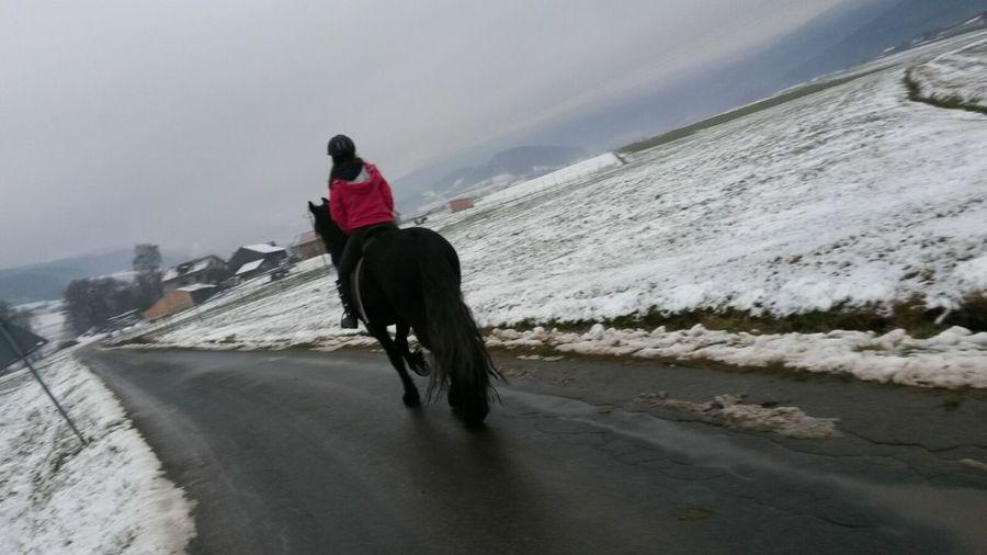 I Love Horses Horse Horses Lilli💝 Enjoying Life Relaxing IPhoneography