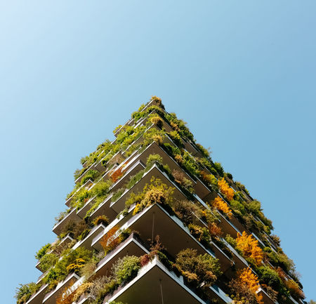 Vertical Forest (Bosco Verticale), a pair of residential towers in the Porta Nuova district of Milan, Italy, Architecture Architecture_collection Boscoverticale EyeEmNewHere If Trees Could Speak Milano Skyscrapers The Week On EyeEm TreePorn Trees Your Ticket To Europe Archilovers Architecture Building Exterior Buildings & Sky Built Structure Clear Sky Contemporary Architecture Low Angle View No People Outdoors Sky Tower Up In The Sky Vertical Forest Your Ticket To Europe