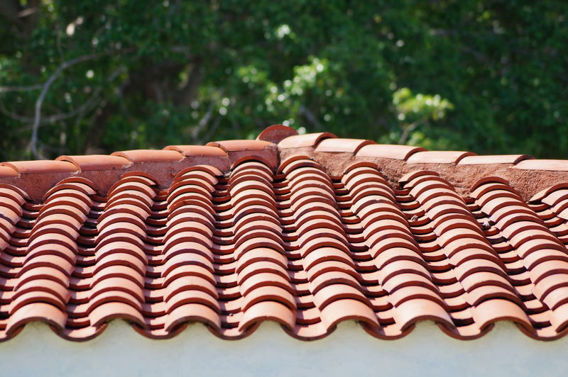 Close-up No People Day Pattern High Angle View Tree Building Exterior Roof Architecture Parque La Choca VillahermosaTabasco