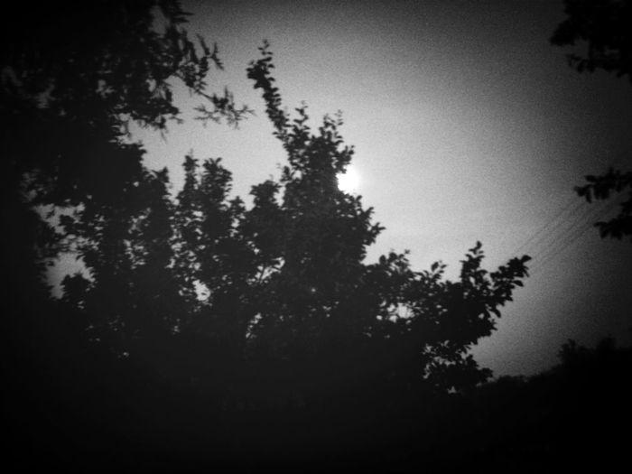Idealny wieczor na spacer :) First Eyeem Photo