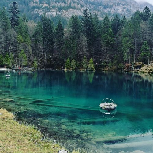 Blausee Switzerland Picturebyme Nature
