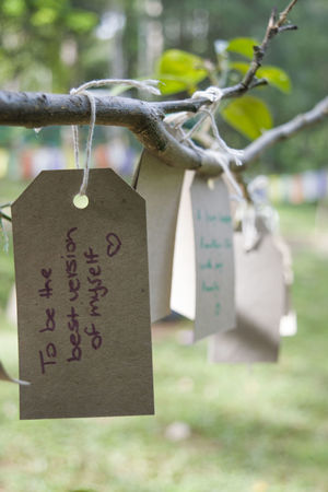 Love Motivation One Life Wishes Hanging Hope Message Nature Outdoors Tree Wish Wish Tree