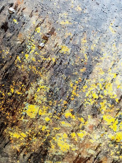 Old rusty wet texture Yellow Rusty Texture Wet Waterdrops Backgrounds Full Frame Textured  Pattern Abstract Close-up RainDrop