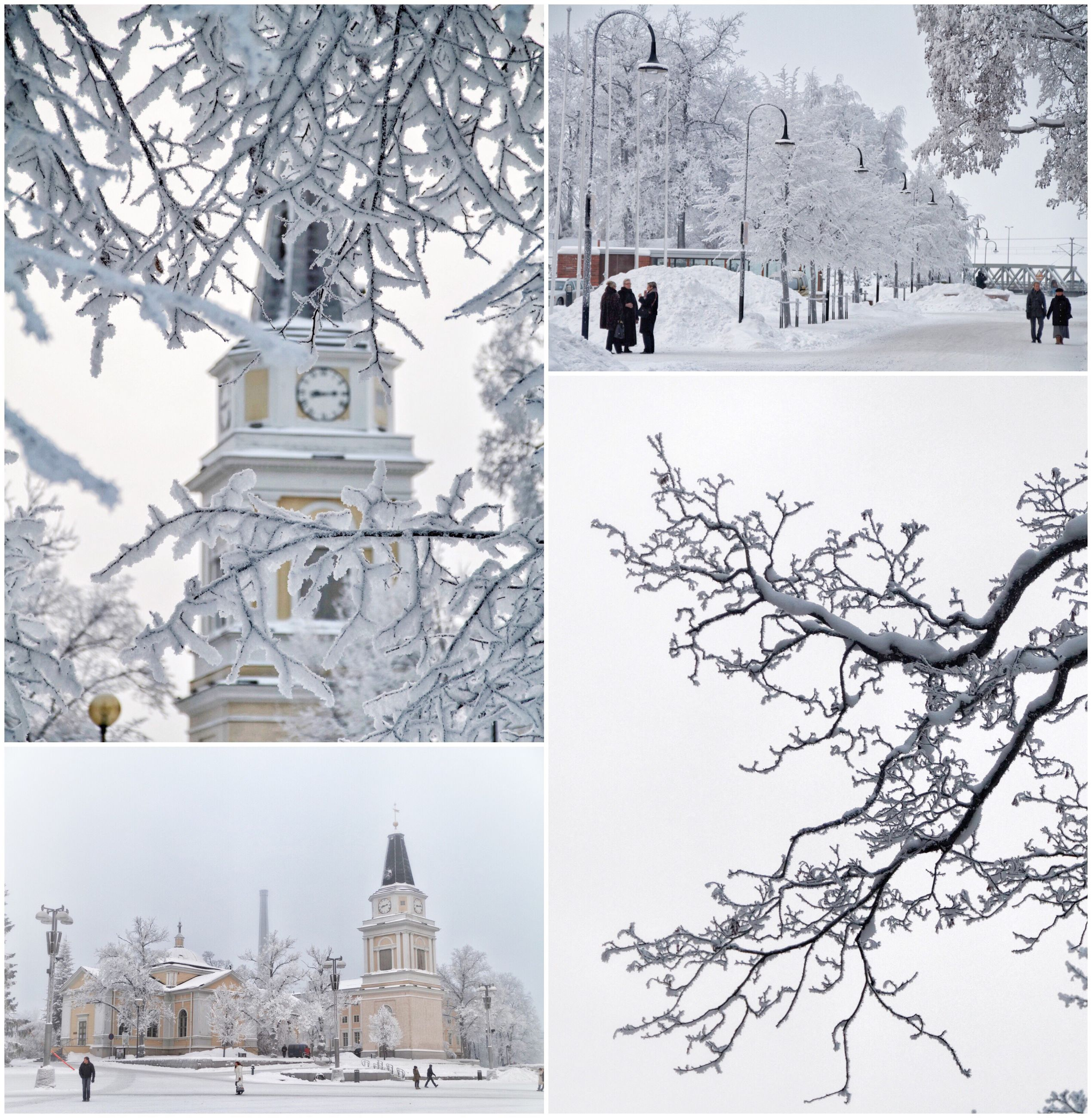 snow, architecture, built structure, tree, building exterior, winter, outdoors, cold temperature, no people, day, nature, branch