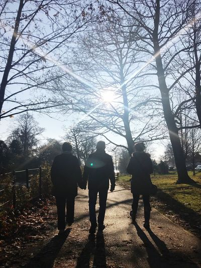 Winter sun Stroll Through Nature Walking Sunday Morning Tree Real People Group Of People Plant Nature Leisure Activity Togetherness Sunlight Lifestyles Silhouette