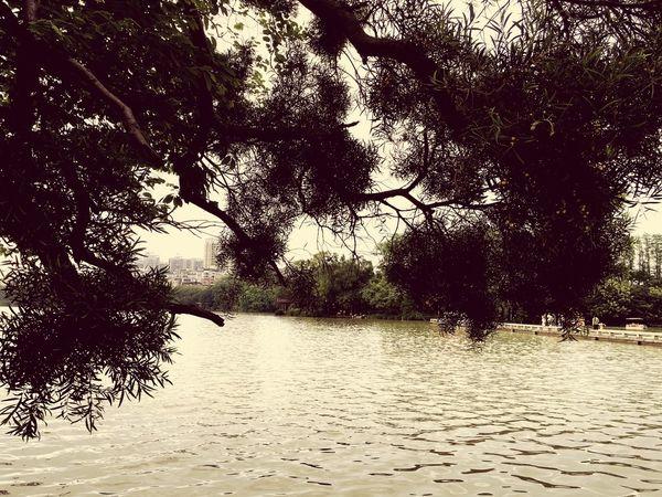 西湖 First Eyeem Photo