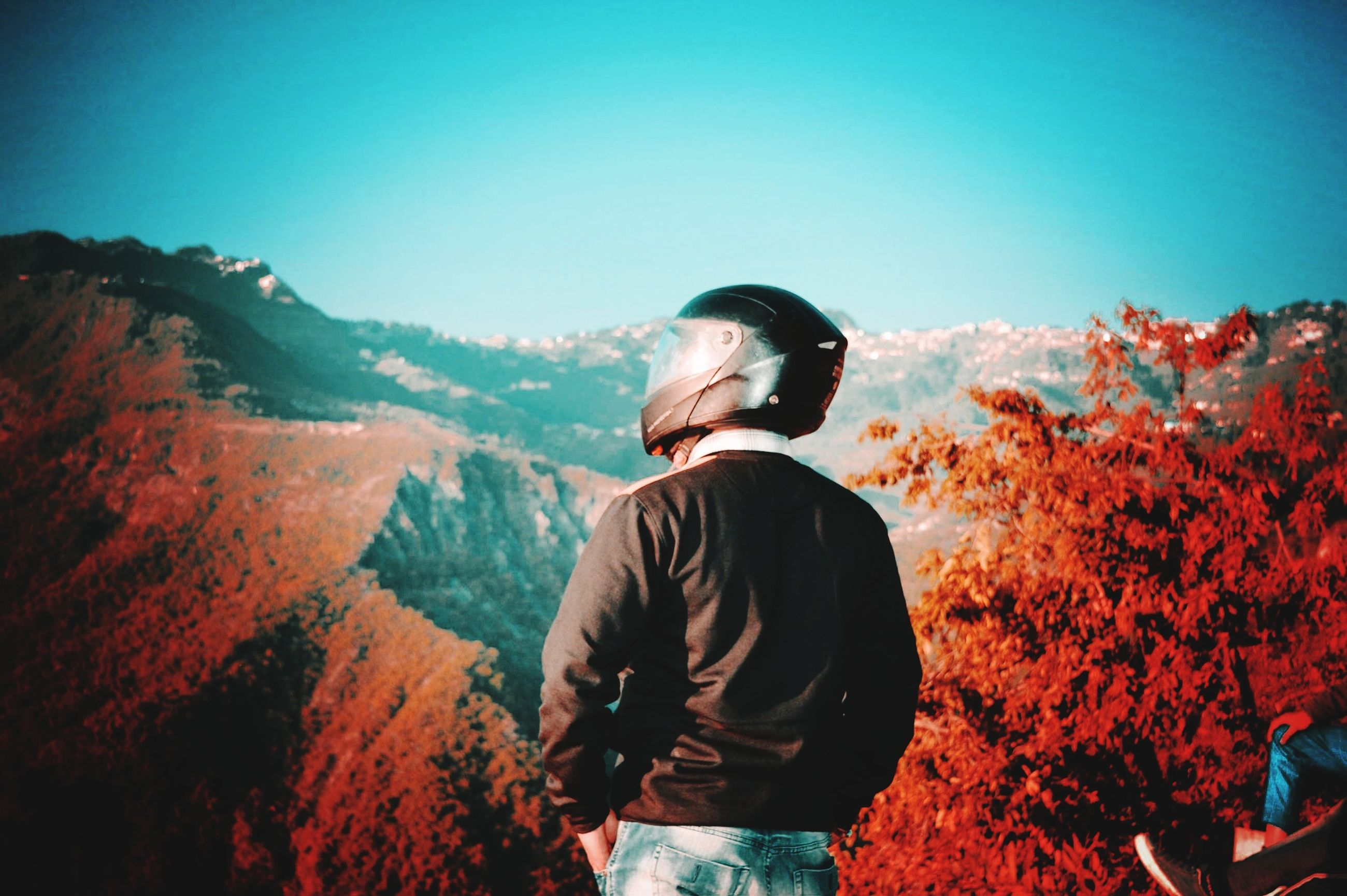 sky, one person, real people, nature, mountain, standing, beauty in nature, lifestyles, rear view, leisure activity, casual clothing, tree, clear sky, plant, day, waist up, environment, sunlight, tranquility, looking at view, outdoors, change