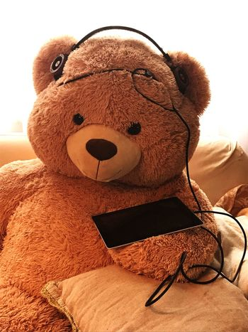 EyeEm Selects Baer Teddy Bear Stuffed Toy Toy Wireless Technology Indoors  Childhood Technology No People Close-up Day