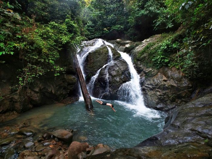 morning dip Kota Kinabalu Malaysia Malaysia Truly Asia Borneo Tree Water Waterfall Forest Motion River Flowing Power In Nature Flowing Water Tranquil Scene