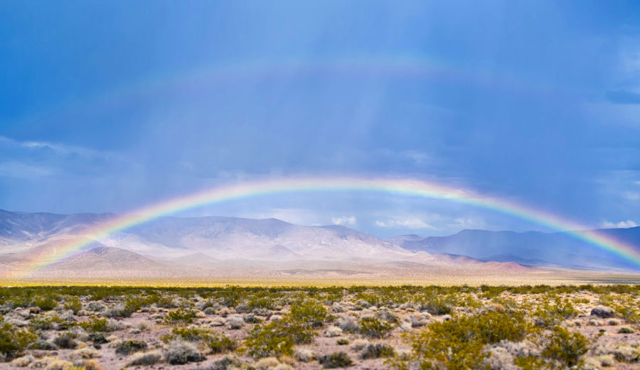 Beautiful rainbow over an American desert with hills and mountains in the background and a clear blue sky for copyspace American Desert Green Rain Red Storm Sunlight Travel USA America Blue Clear Colorful Dramatic Dry Environment Landscape Multi Colored Nature Outdoors Rainbow Remote Sky Wild Yellow