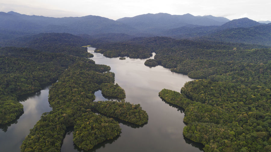 An aerial view of beautiful rain forest. Beauty In Nature Day Mountain Mountain Range Nature No People Outdoors Scenics Sky Tranquil Scene Tranquility Tree Tropical, Nature, Jungle, Tree, Landscape, Green, Forest, Rain, Water, Background, Travel, Environment, Plant, Beauty, Outdoor, Rainforest, View, Beautiful, Wild, Wet, Scenery, Stream, Exotic, River, Natural, Fog, Top, Lake, Fresh, Leaf, Aerial, Creek, Dr Water