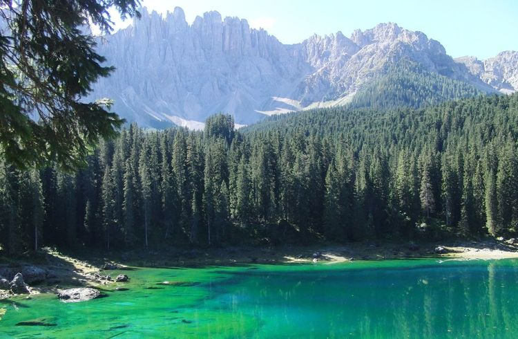 Beauty In Nature Blue Day Forest Green Color Idyllic Karersee Lago Di Carezza Lake Landscape Landscape With Whitewall Mountain Mountain Range Mountain View Nature Non-urban Scene Reflection River Scenics Tranquil Scene Tranquility EyeEm Best Shots The KIOMI Collection Waterfront Landscapes With WhiteWall