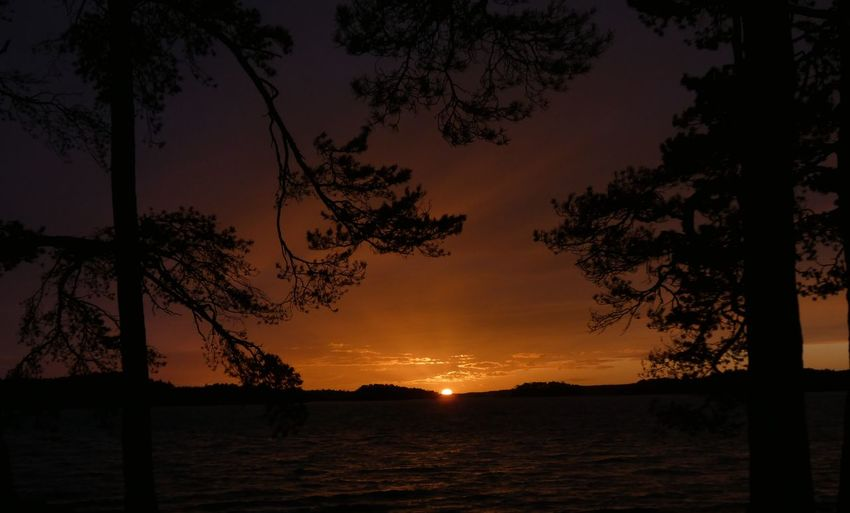 Sea Sea And Sky Sunsets Sunset_collection Finland Evening Sky Finnish Nature Trees Tree Water Sunset Astronomy Beach Sky Landscape Calm