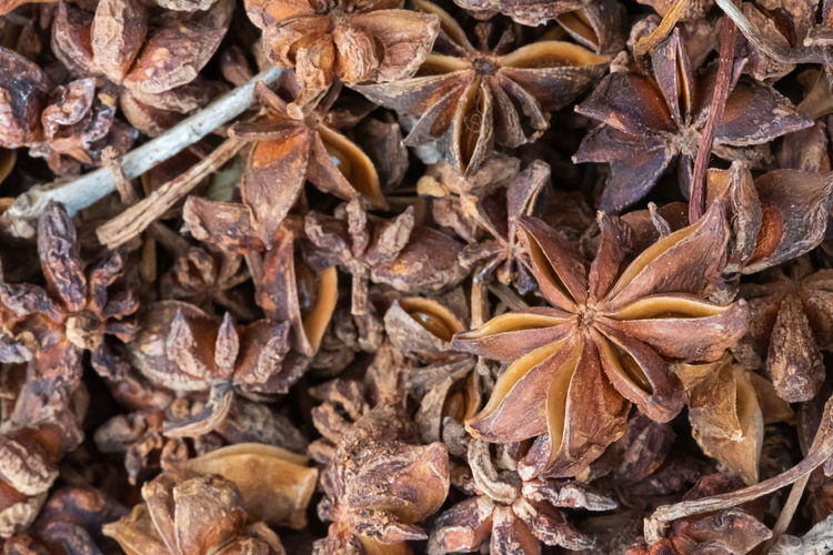 chinese anise Backgrounds Food And Drink Food Full Frame Star Anise Dried Food Close-up No People Dry Large Group Of Objects Brown Spice Abundance Freshness Star Shape Shape Directly Above Seed Still Life Nature Leaves Chinese Food Illicium Verum Hook Chinese Anise