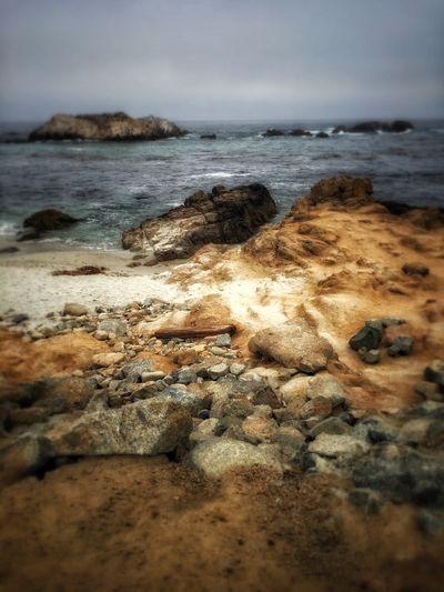 birds rock 17 Mile Drive Rugged Coastline Selective Focus WestCoast California Pebble Beach Rock Formation Pacific Ocean Birds Rock