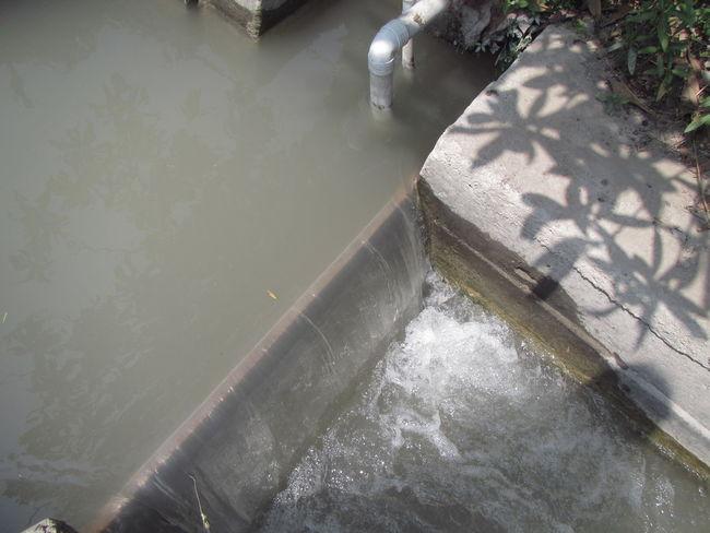 Sequia Sèquia Sèquia Water Flood Shadow