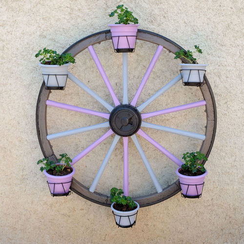 Potted Plant Architecture No People Building Exterior Built Structure Plant Day Outdoors Flower Growth Nature Multi Colored Wagon Wheel Colourful Decoration