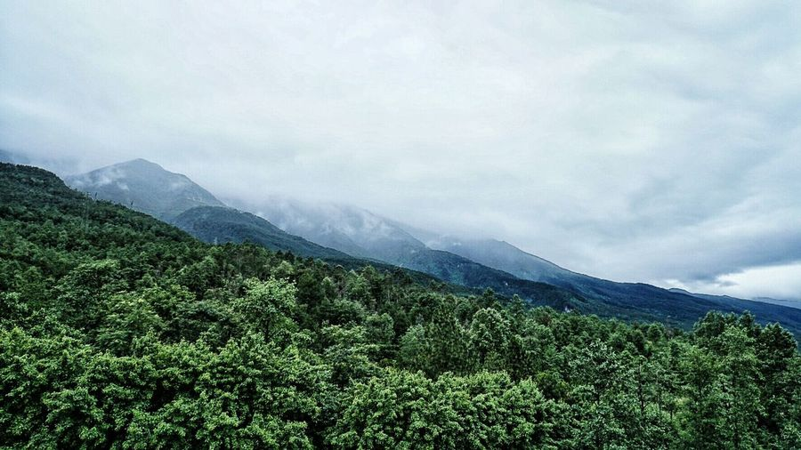 Dali Yunnan ASIA China Yunnan Dalí Mountains Clouds Forest EyeEm China Lost In The Landscape