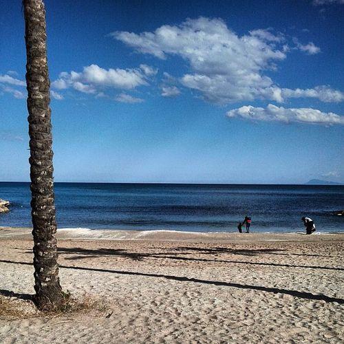 #cullera #igerscullera Mediterràniament Mediterranean  Cullera Igerscullera Igersvalencia EyeEm Nature Lover Nature