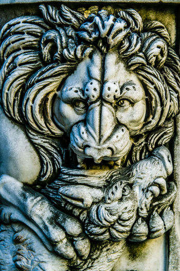 Lion Art And