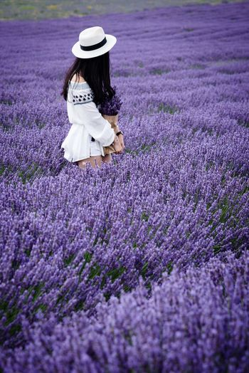 Adult Agriculture Beauty In Nature Day Field Flower Full Length Growth Hat Lavender Lavenderflower Nature One Person One Woman Only One Young Woman Only Only Women Outdoors People Purple Real People Young Adult Young Women #FREIHEITBERLIN This Is Natural Beauty