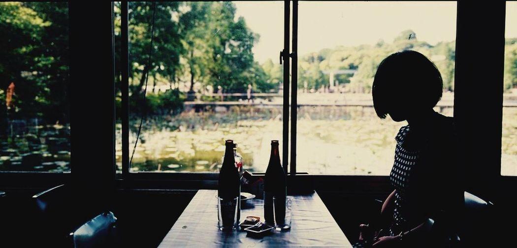 Memories Ueno Park Silhouette Japan Panorama