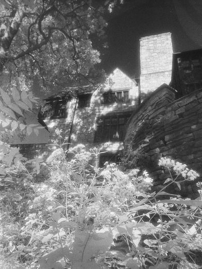 35mm Film Analogue Photography Architecture Botany Building Exterior Built Structure Day Eerie Eerie Beautiful Growth Haunted Haunted House House In Bloom Infrared Infrared Photography Landscape Landscape_Collection No People Outdoors Spooky Springtime Tree
