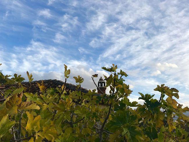 #Radhime Nature Sky Outdoors Albania Freshness Radhime