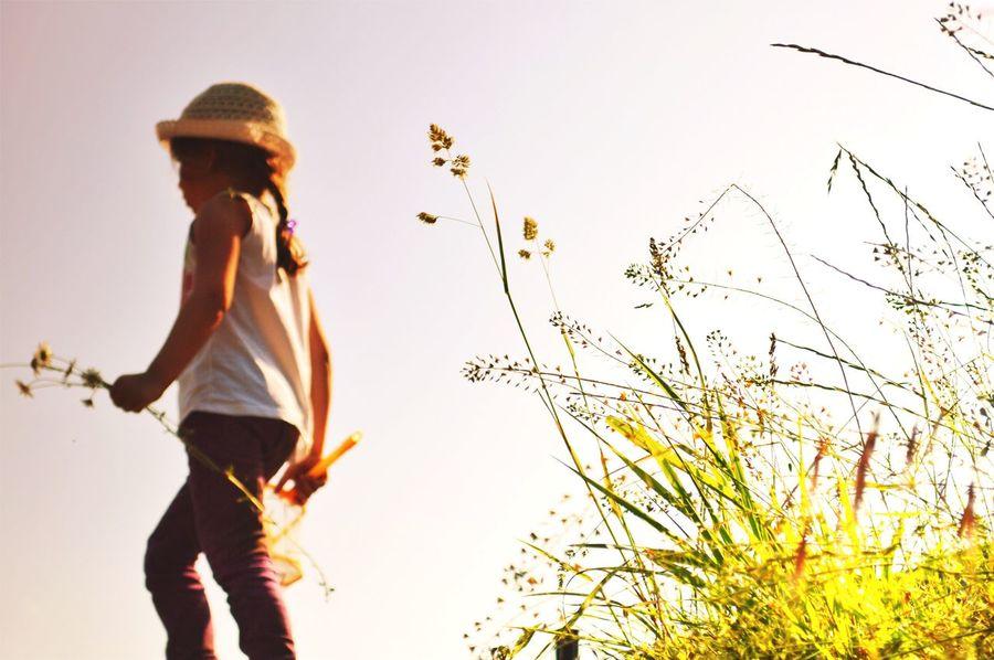 Nature Minimalism Naturelovers Enjoying Life