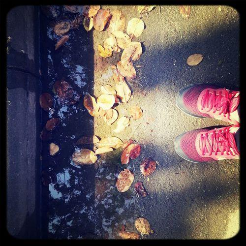 just walking around. Autumn Leaves Autumn Colors Wanderlust Nike