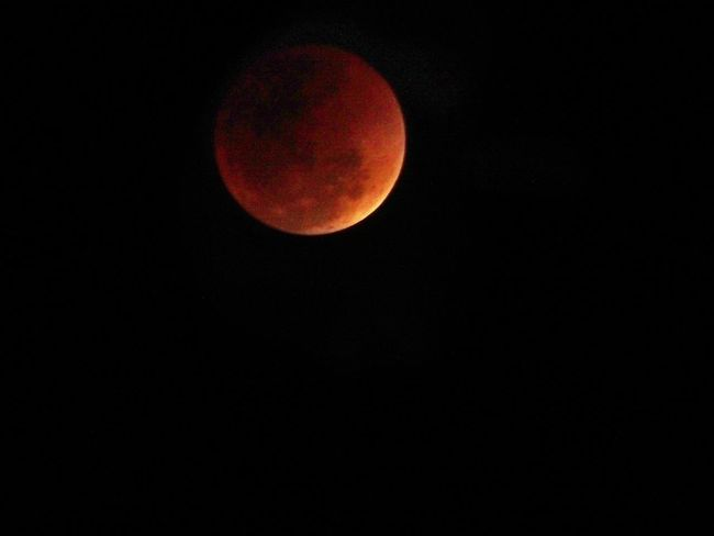 Super blue blood moon Superbluebloodmoon Lunereclipse Astronomy Moon Night Eclipse Red Star - Space Moon Surface Space Planet - Space No People Sky Nature Beauty In Nature Outdoors Galaxy