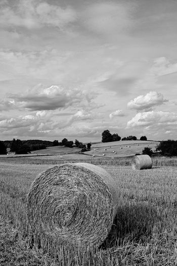 Field Land Sky Landscape Plant Cloud - Sky Agriculture Rural Scene Hay Environment Tranquility Tranquil Scene Bale  Farm Beauty In Nature Nature Scenics - Nature Day Harvesting No People Outdoors Rundstrohballen Stoppelfelder Black And White