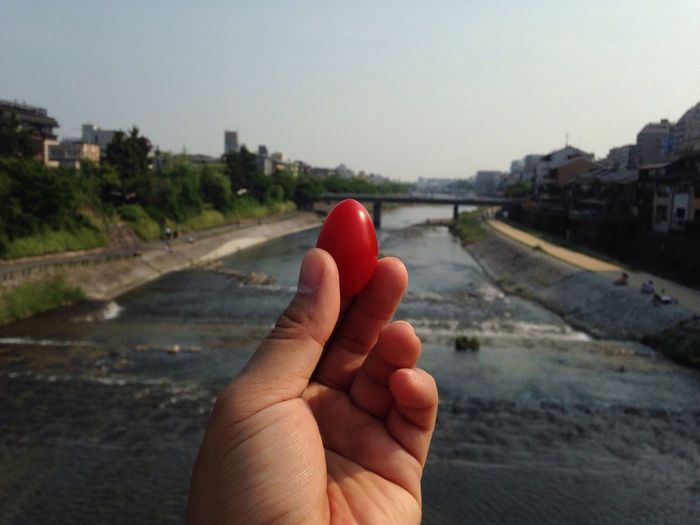 Baby tomato Kyoto River Kyoto Town Free Baby Tomato On The Way Fresh Veggy Lovely Afternoon Cycling Around Old Town Japan 2016 Left Hand