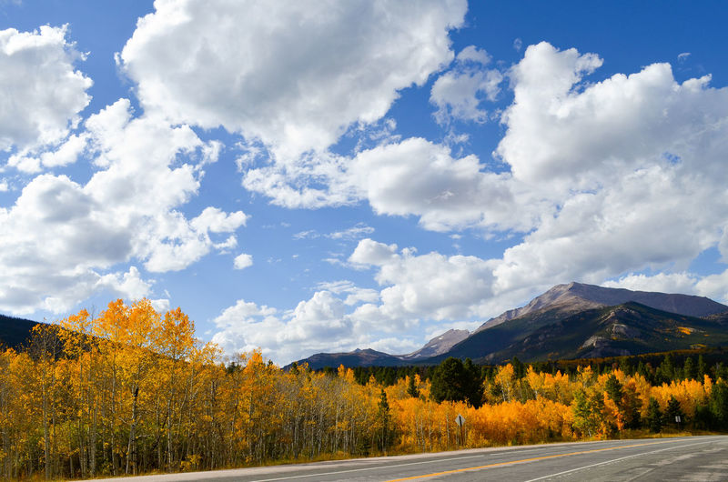 That road is US 7 going to Estes Park in Colorado. The Aspen trees change their leaves to a strong yellow. Aspen Aspen Trees Autumn Autumn Colors Autumn🍁🍁🍁 Beauty In Nature Cloud Colorado Country Road Countryside Day Estes Park, CO Fall Colors Idyllic Landscape Mountain Nature Non-urban Scene Road Roadside Scenics Sky Tree United States