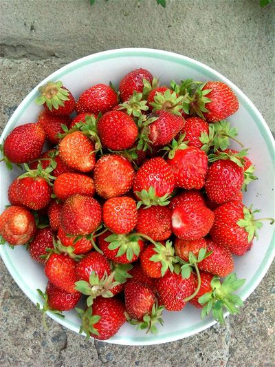 Summertime Summer Strawberry Enjoying Life Relaxing Mothers Garden Gardening Tasty Bouncer
