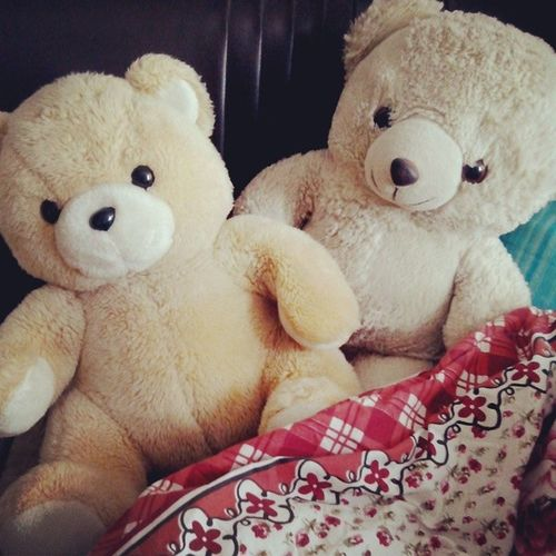 "Day 22. These boys always call me to bed saying "" cover me up, cuddle me in "".. Cuddlebuddy LoveThem  Withmethroughthickandthin"